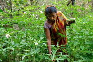 10 Signs of an Impending Global Land Rights Revolution